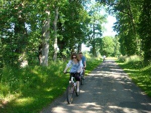 Cycling by the Haras