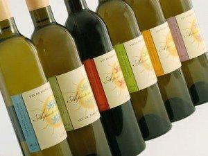 The wine of Normandy Les Arpents du soleil