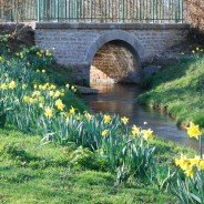 So much to do  and see in Normandy ! Spring 2014