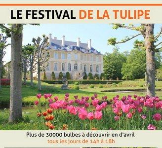 Vendeuvre tulip festival small